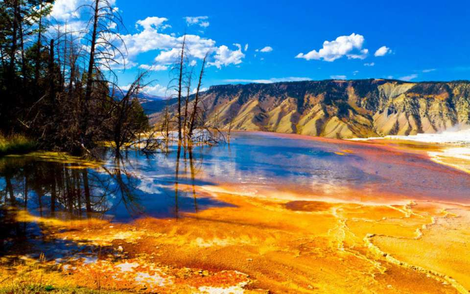 Yellowstone National Park - photo 4