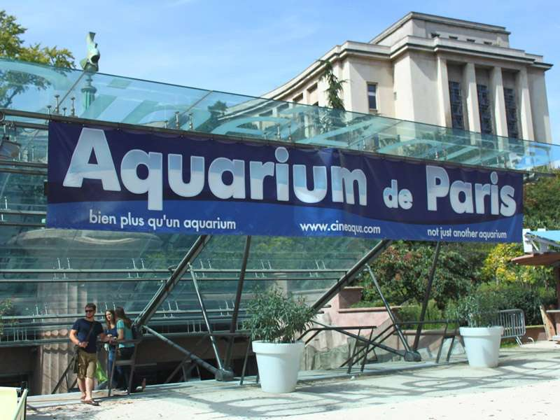 Aquarium de Paris - photo 2