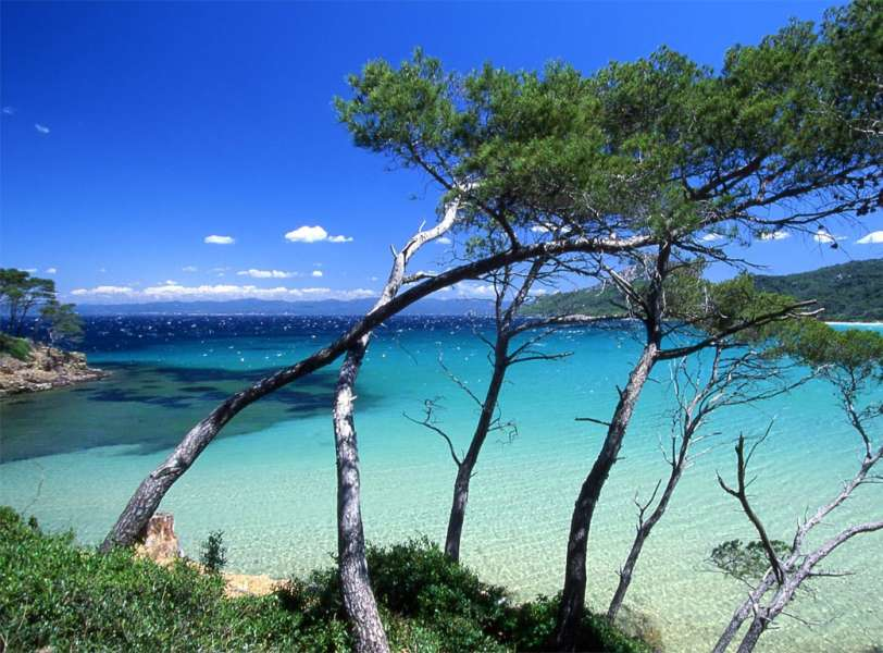 Parc national de Port-Cros - photo 2