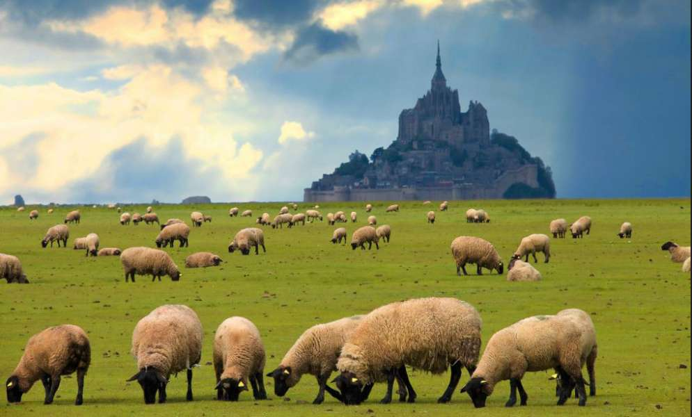 Mont-Saint-Michel - photo 2
